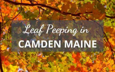 Camden Maine Fall Foliage